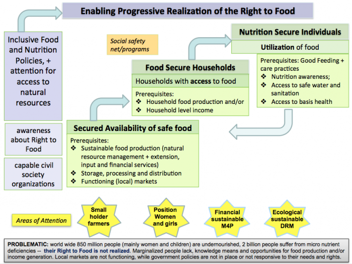 Food and nutrition intro chart.png